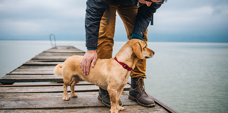 Man with his dog standing on dock