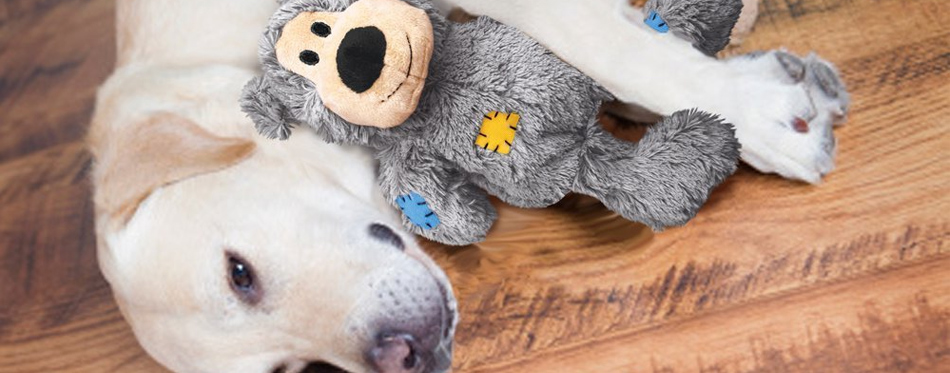 dog with a plush toy