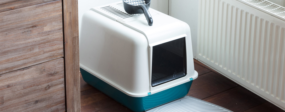 plastic cat litter box