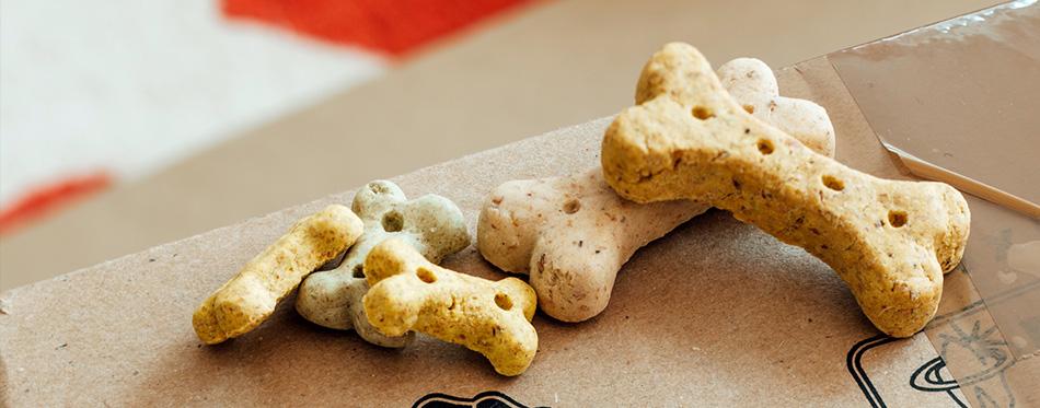 Bone shaped dry pet dog food