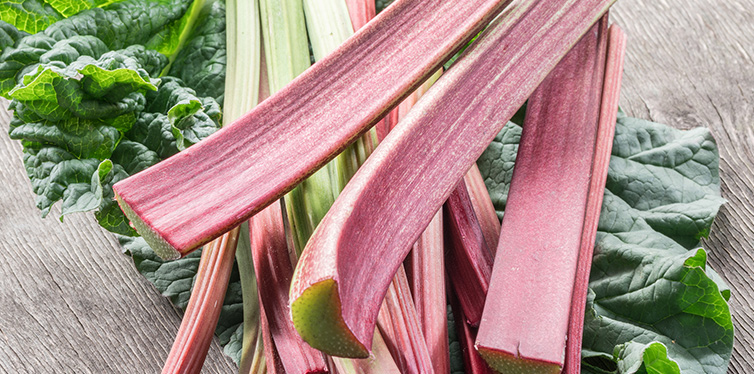 Edible rhubarb stalks on the wooden table