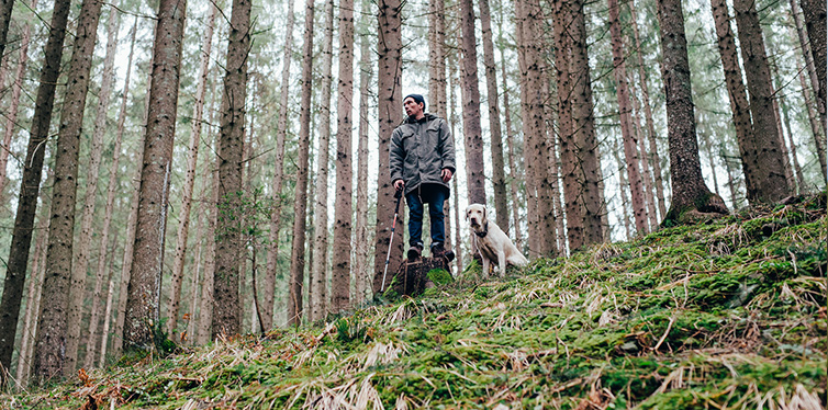 Man hiking in the forest with labrador dog