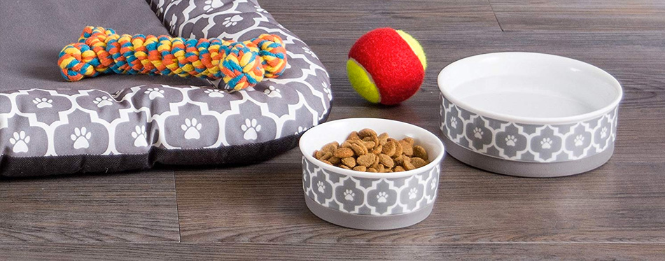 dog bowls on the floor