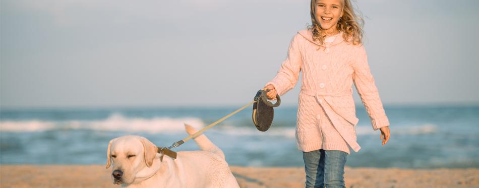 girl walking a dog