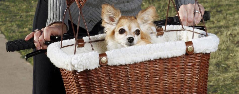Dog Carrier for Bikes