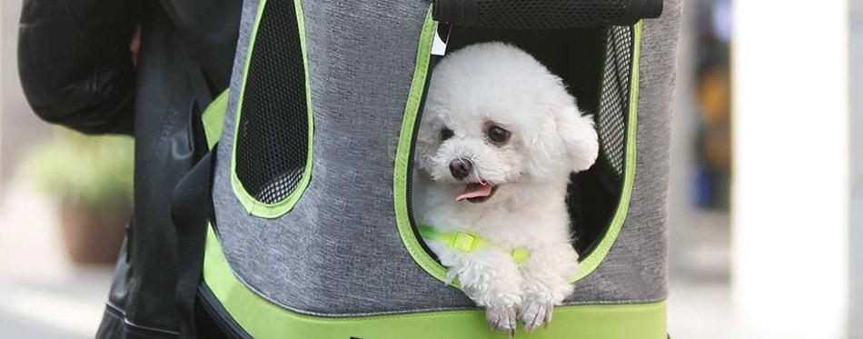 Soft Pet Backpack Carrier