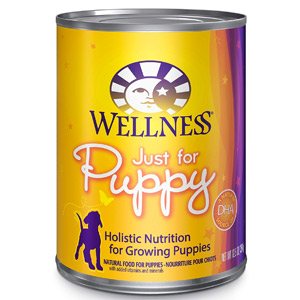 Wellness Natural Pet Food Wet Canned Dog Food