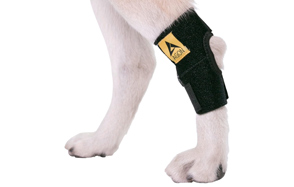 Agon-Dog-Rear-Hock-Joint-Dog-Knee-Brace-image