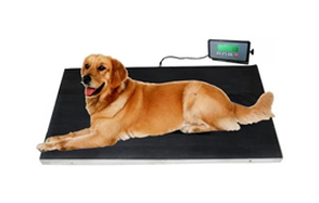 Be-Supply-Dog-Weight-Scale-image