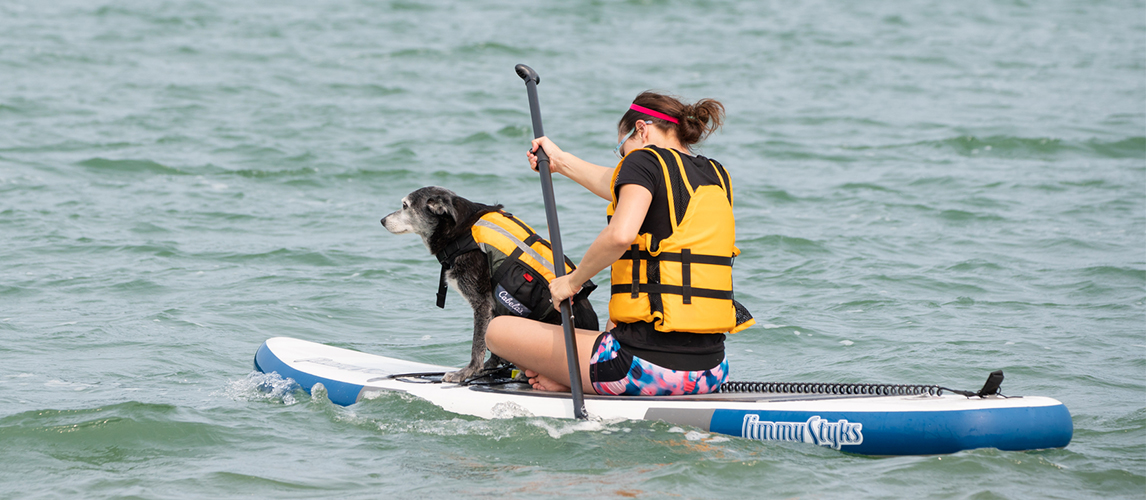 Dog and owner in a kayak