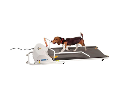 GoPet-Dog-Treadmill-Indoor-Exercise-Kit-image