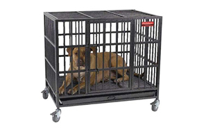 Guardian-Gear-ProSelect-Empire-Dog-Crate-image