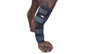 Labra-Extra-Supportive-Dog-Knee-Brace-image