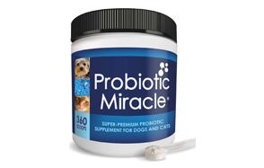 NUSENTIA-Probiotic-Miracle-Dog-image