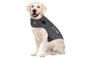Thundershirt-Dog-Anxiety-Vest-image