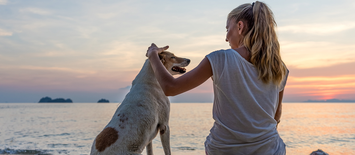 Young woman with dog sitting on the beach and watching t