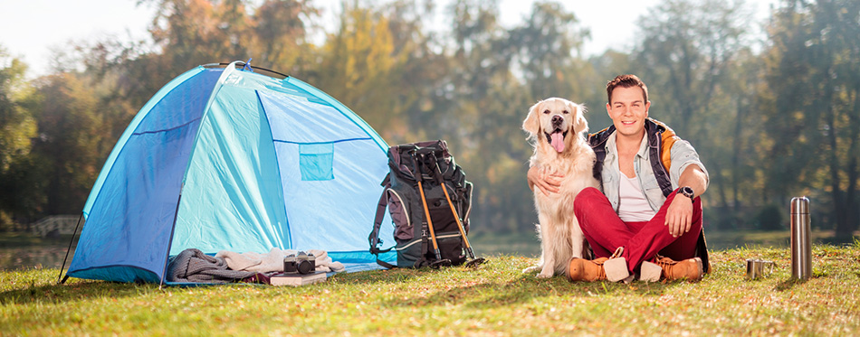 Camper on the grass hugging a dog