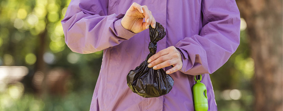 Cropped shot of young woman holding trash bag while cleaning after pet in park