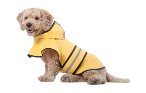 Ethical-Pet-Fashion-Raincoat-for-Dogs-image