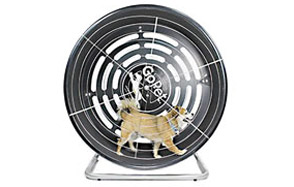 GoPet-Treadwheel-for-Small-Dogs-image