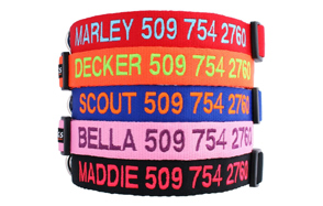 GoTags-Personalized-Dog-Collars-image