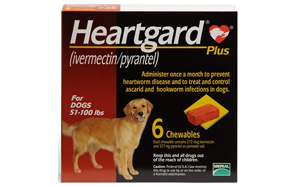 Heartguard-Plus-Chewables-for-Dogs-image