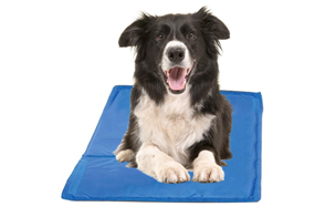 Hugs-Pet-Products-Dog-Cooling-Pad-image