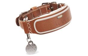Link-AKC-Smart-Dog-Collar-image