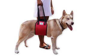 Love-Pets-Love-Dog-Lift-Harness-image