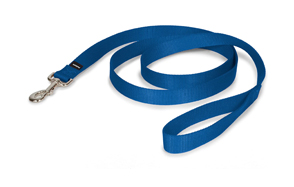 PetSafe-Nylon-Dog-Leash-image