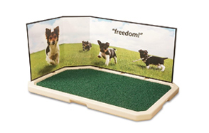 PetSafe-Piddle-Place-Dog-Potty-image