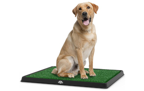 Petmaker-Puppy-Potty-Trainer-image
