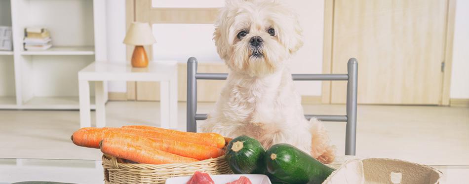 Preparing natural food for pets