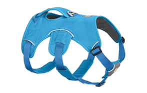 Ruffwear-Web-Master-Puppy-Harness-image