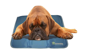 The-Green-Pet-Shop-Dog-Cooling-Mat-image