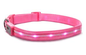 Blazin'-Safety-Dog-LED-Collar-image