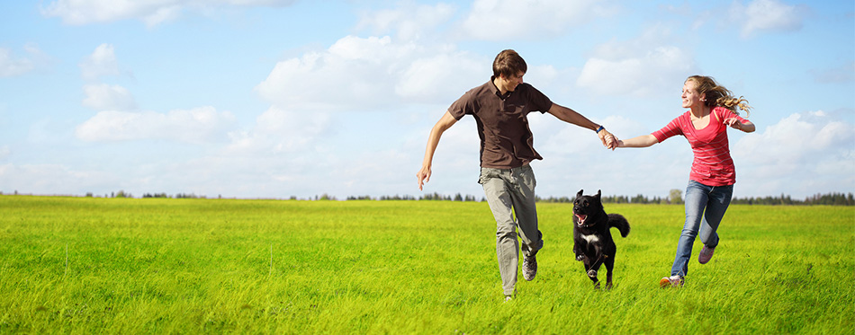 Couple running with a dog