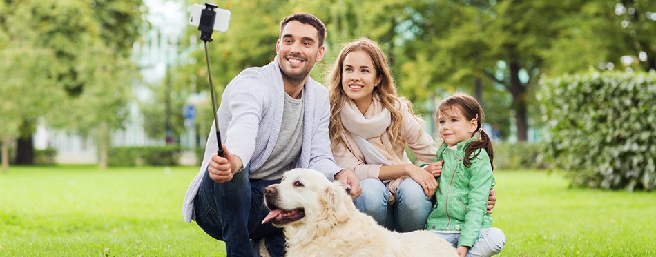 Helpful Tips To Take The Perfect Photo Of Your Dog