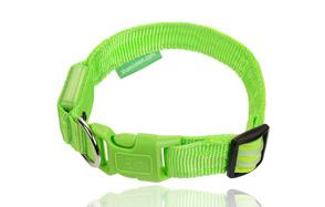 Illumiseen-Dog-LED-Collar-image