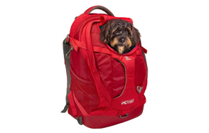 Kurgo-Dog-Carrier-Backpack-for-Dog-image