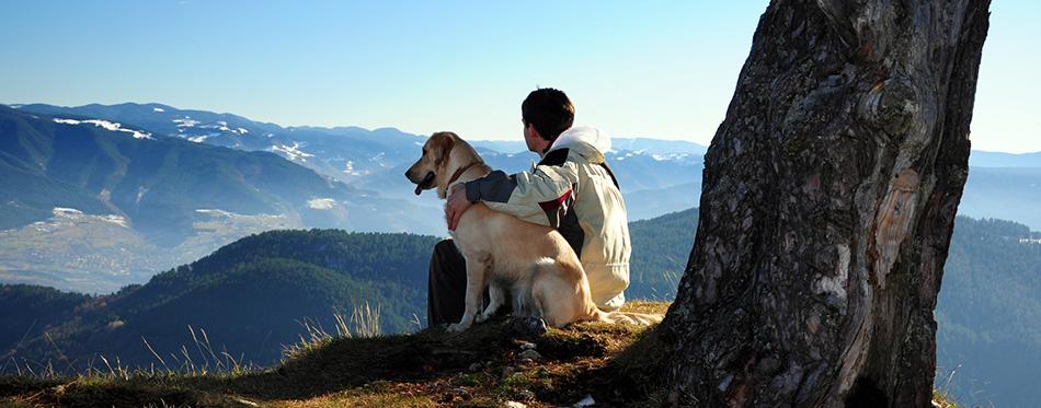 Owner and dog hugging