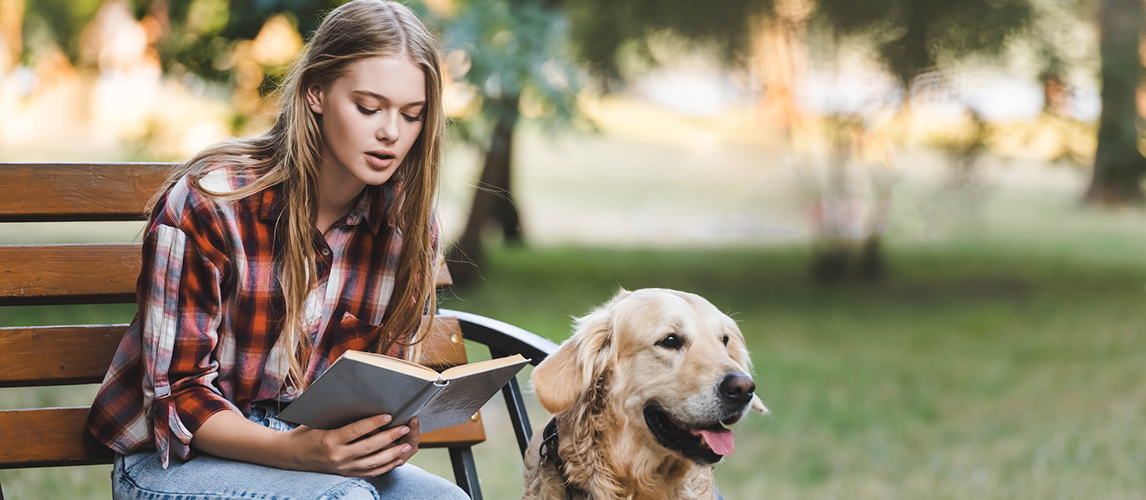 Beautiful girl in casual clothes sitting on wooden bench in park and reading book near golden retriever