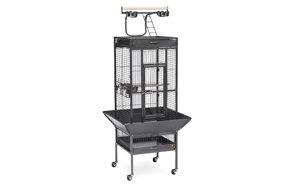 Prevue-Wrought-Iron-Select-Bird-Cage-image