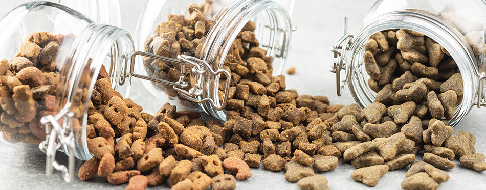 Dry pet food. Kibble dog or cat food