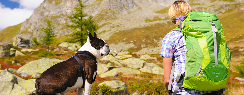 Hiking woman with dog in mountains