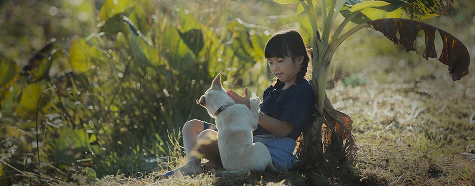 Little girl staying away from her friend and playing with her dog in the garden during the summer holiday. This is a social distancing.