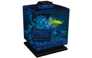 GloFish-Aquarium-Kit-image