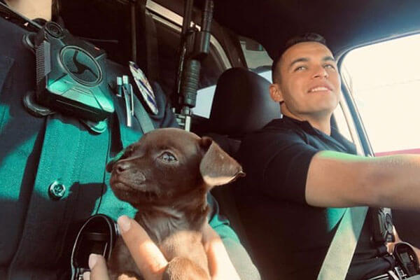 Two police officers and a puppy in police vehicle