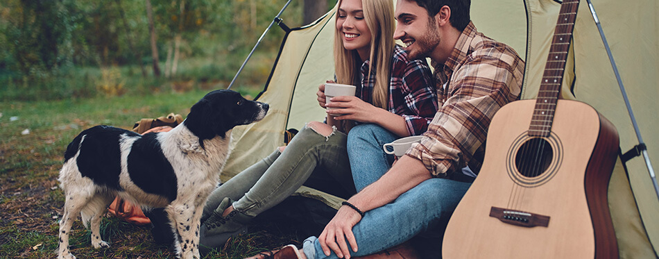 Attractive woman and handsome man are spending time together on nature with dog.