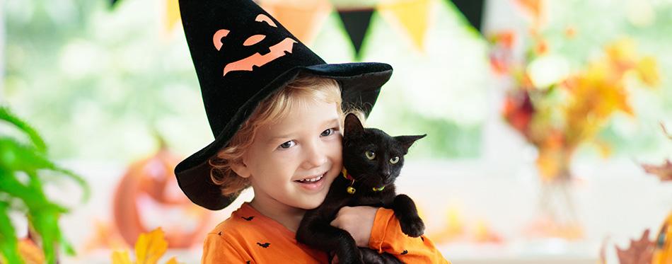 Child in Halloween costume.